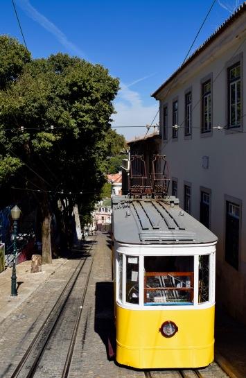 Tram281